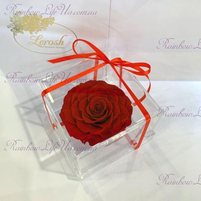 """Бутон розы в коробке """"Lux"""""""