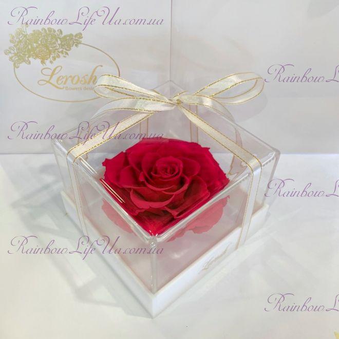 "Бутон розы в коробке малиновая ""Lux"""