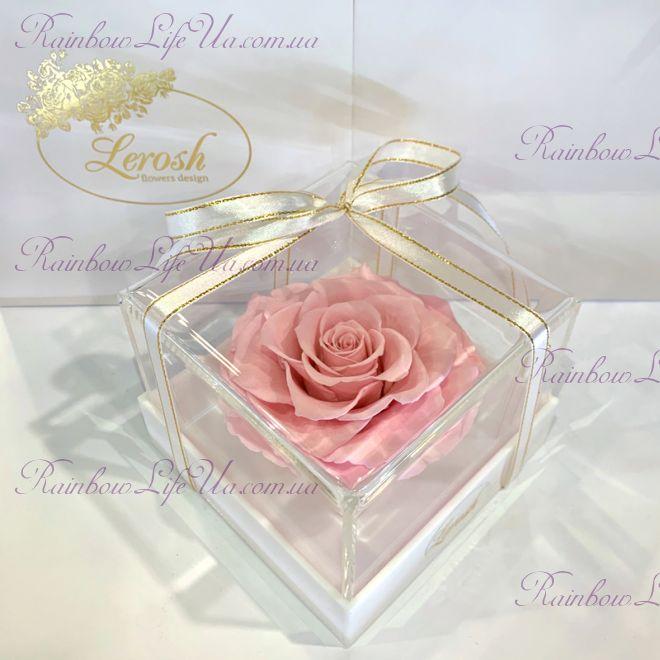"""Бутон розы в коробке розовая """"Lux"""""""