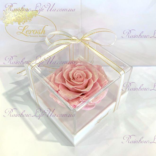 """Бутон розы в коробке розовый жемчуг """"Lux"""""""