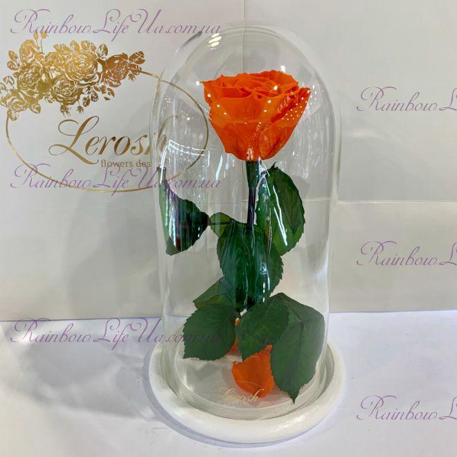 "Роза в колбе оранжевая 27 см ""Classic"""