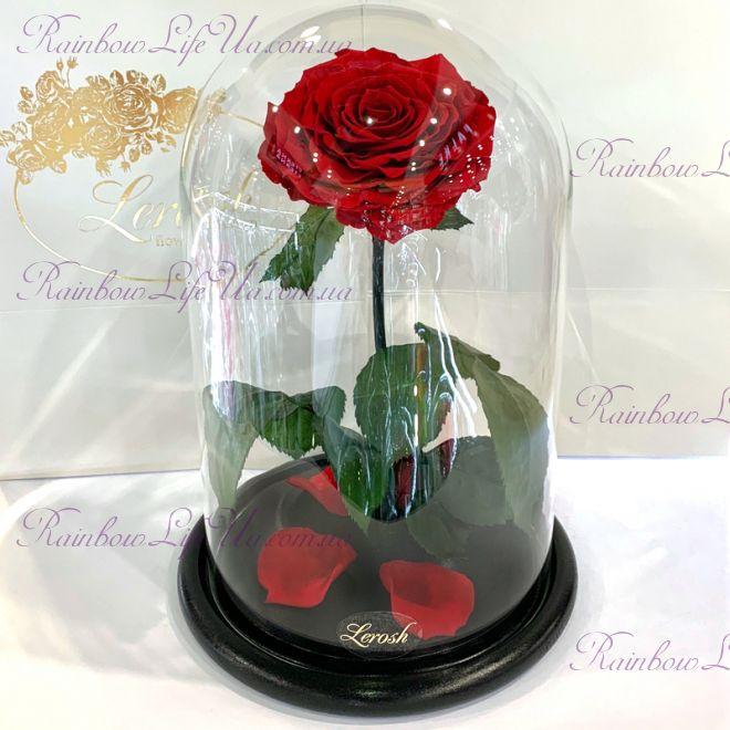 "Роза в колбе раскрытая красная 33 см ""Lux"""