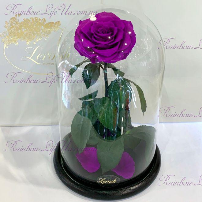 """Роза в колбе раскрытая фиолетовая 33 см """"Lux"""""""