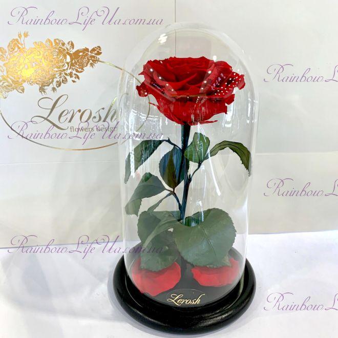 """Роза в колбе красная 27 см """"Premium"""""""