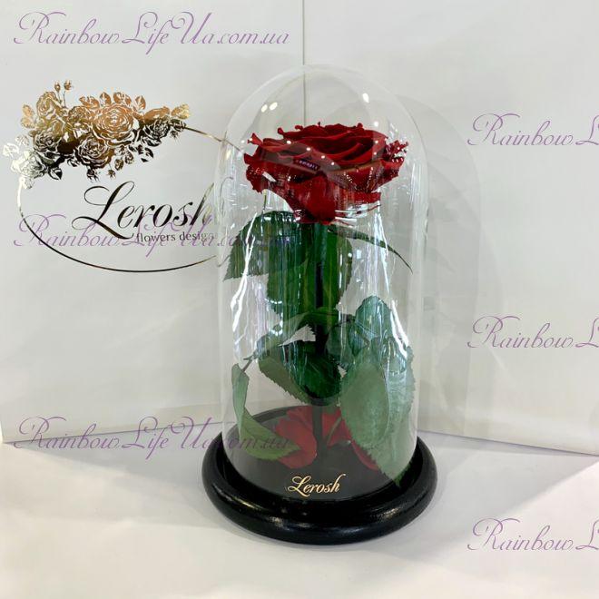"""Роза в колбе бордовая 27 см """"Premium"""""""