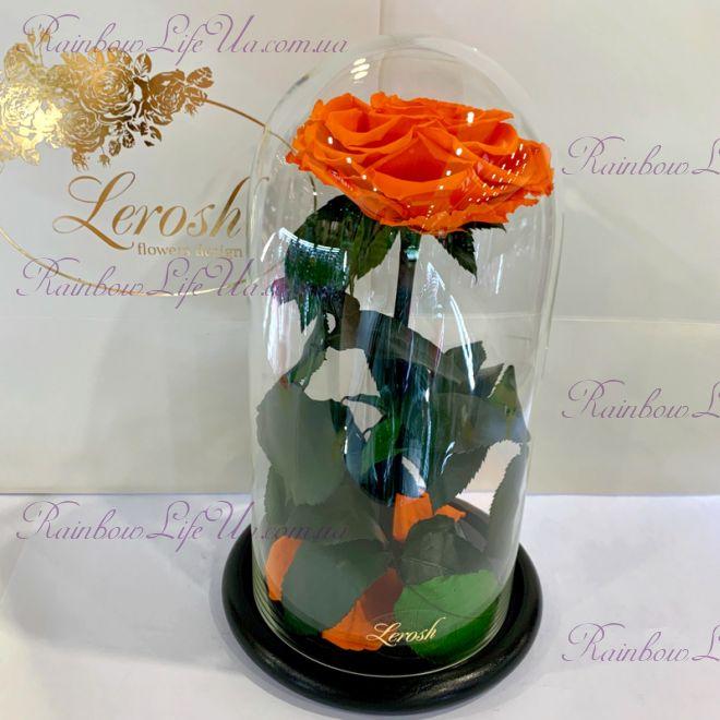 """Роза в колбе 27 см оранжевая """"Premium"""""""