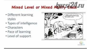 How to teach mixed level groups (Ирина Ботнарь)