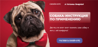 [kinologschool] Собака: инструкция по применению. Тариф - Одинокий волк (Антонина Зимарева)