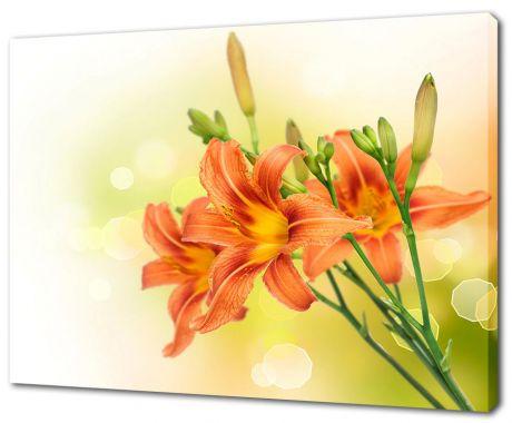 Картина на холсте Красные лилии