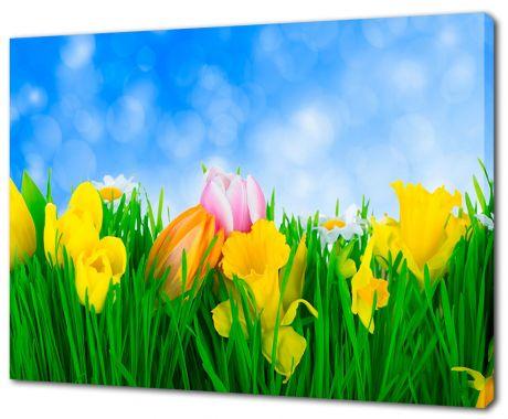 Картина на холсте Поле цветов