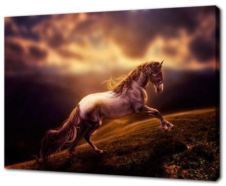Картина на холсте Лошадиный бег