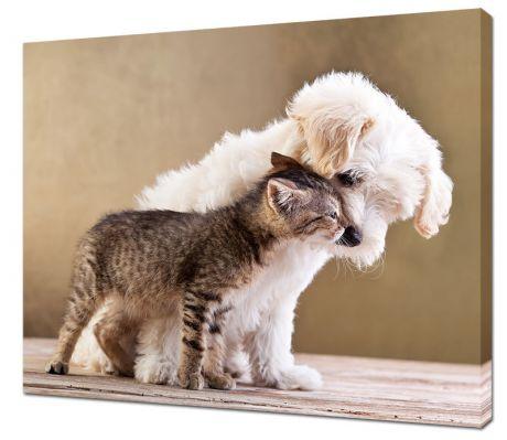 Картина на холсте Щенок и котенок