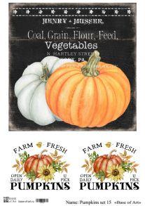Pumpkins set 15