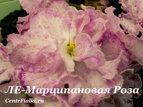 ЛЕ-Марципановая Роза (Е.Лебецкая)