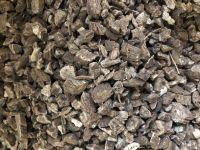 Кыст аль хинди ,корешки 50 грамм