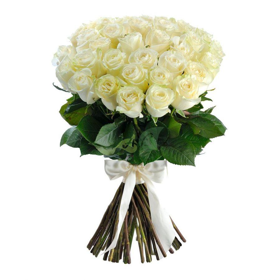 Розы белые от 11 шт (40 см)