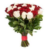 Розы красно белые от 11 шт (40 см)