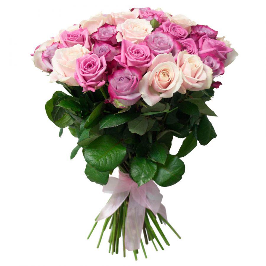 Сиренево-белые розы