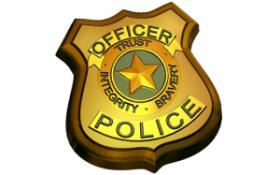 Пластиковая форма для мыла и шоколада   673 - Полиция