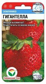 Земляника Гигантелла 10шт (Сибирский сад)