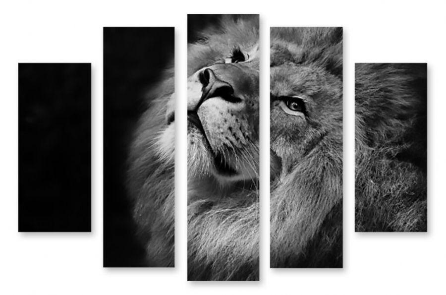 Модульная картина Черно-белый лев