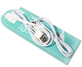 Кабель USB-микроUSB HOCO X1, 1,0м, белый, 2шт.