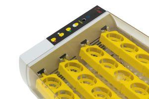 Инкубатор для яиц автоматический И-24_1