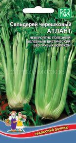 Сельдерей черешковый Атлант (Уральский Дачник)