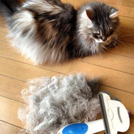 Инструмент для вычёсывания шерсти со сменным ножом Pet Necessities Soave (фурминатор)