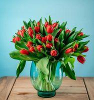 Тюльпаны махровые 35 шт.