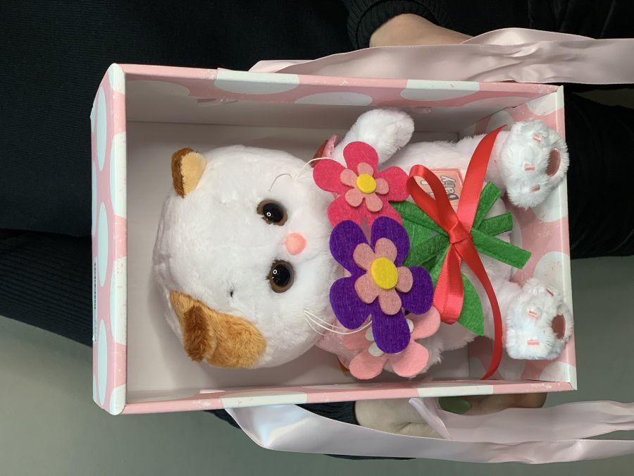 Мягкая игрушка Basik Кошечка ли с цветами