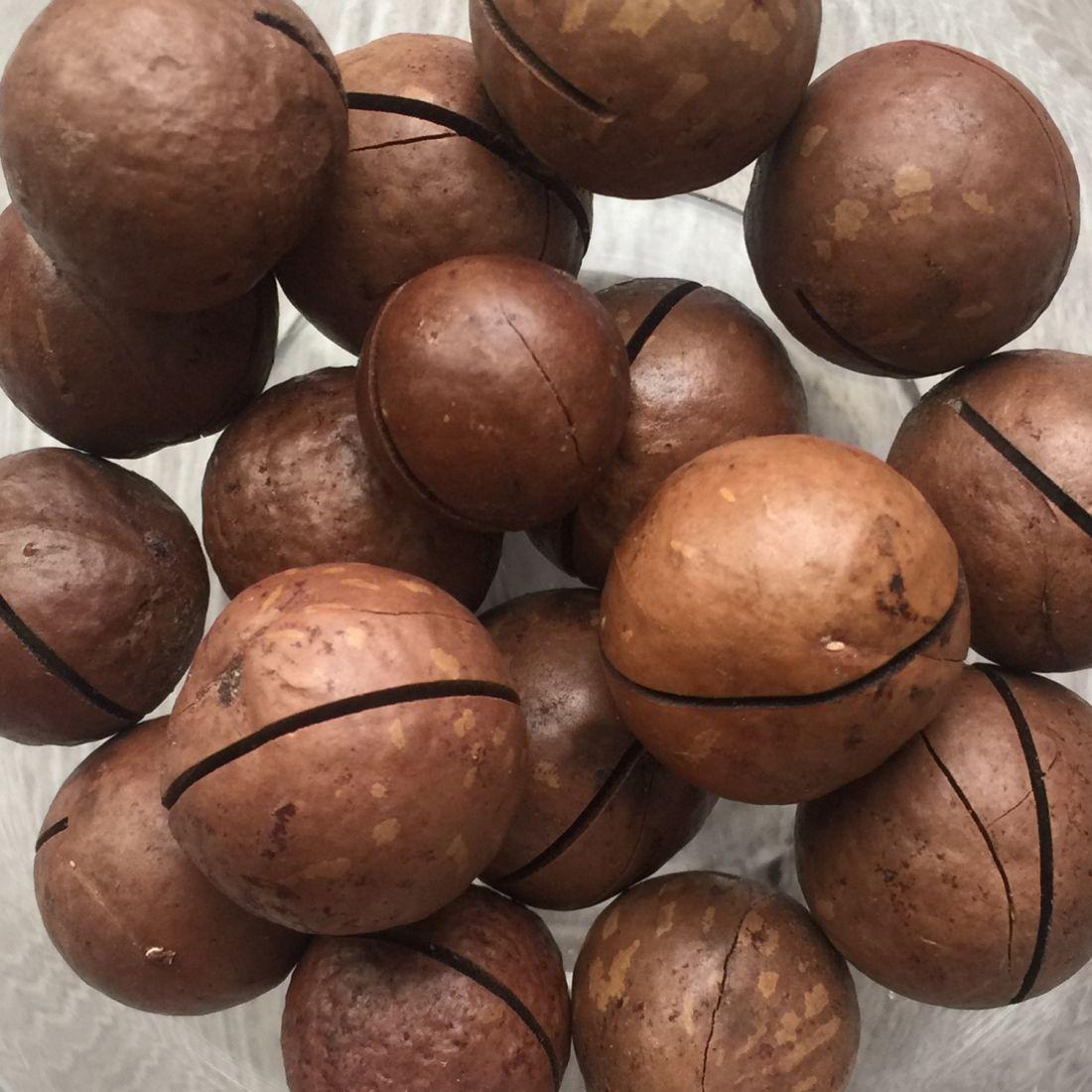 Макадамия - 500 гр средний калибр