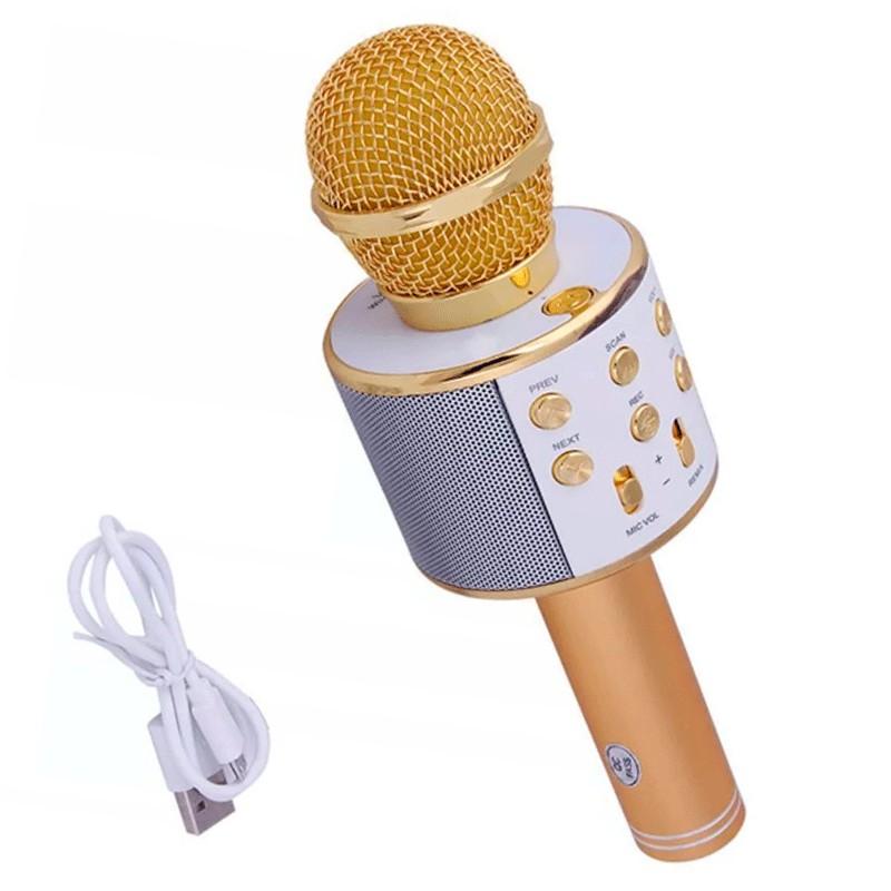 Беспроводной караоке-микрофон Bluetooth Handheld KTV WS-858