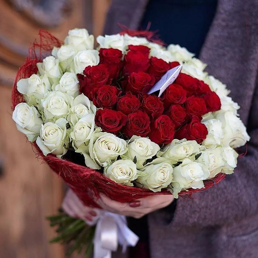 51 красная и белая роза 50см