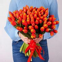 Тюльпаны 101 (оранж)