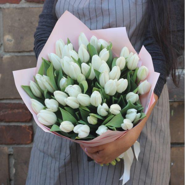 51 белый тюльпан в красивой упаковке