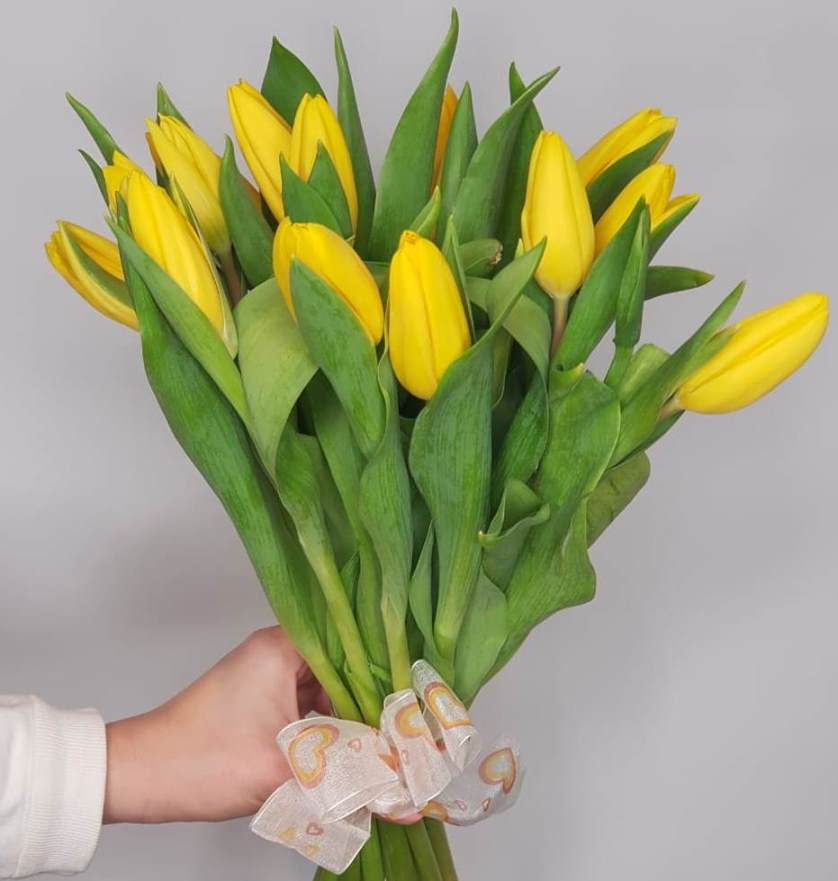 Тюльпаны желтые 15 шт