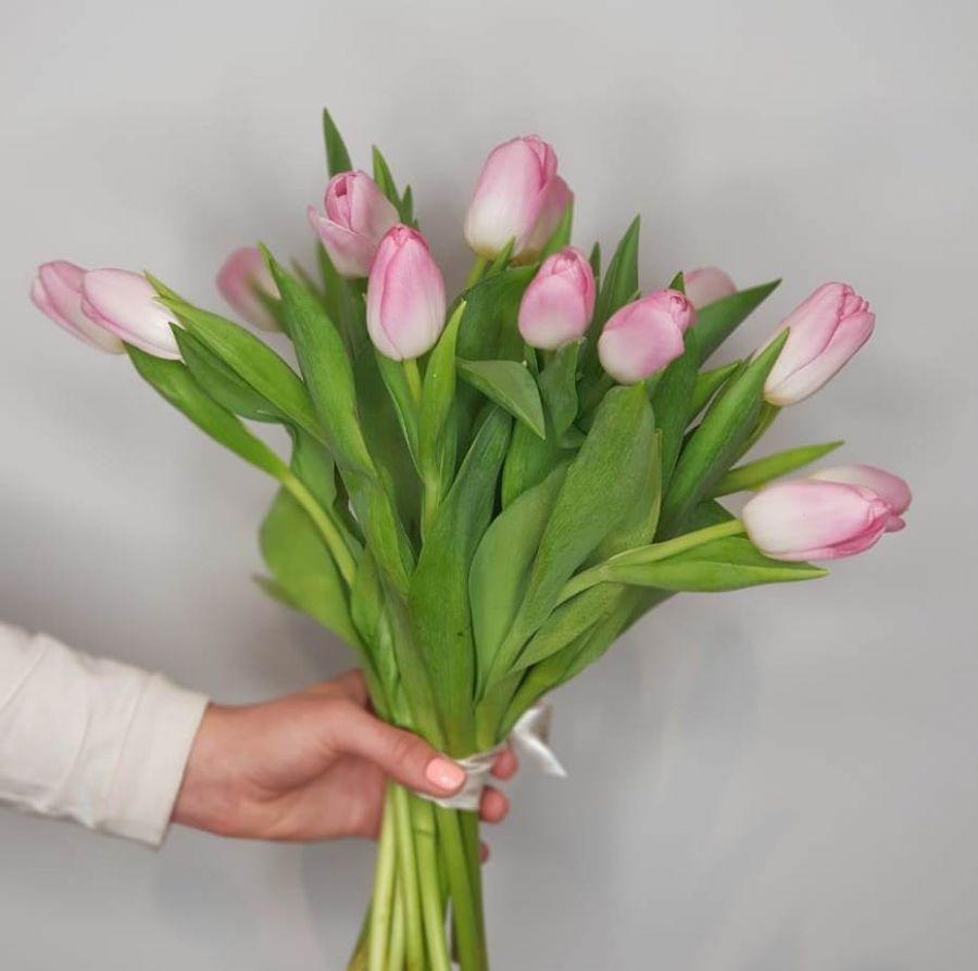 Тюльпаны розовые 15 шт