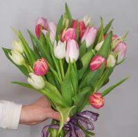Тюльпаны махровые микс 25 шт