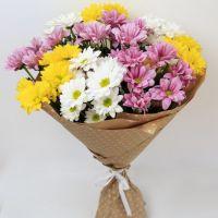 9 кустовых хризантем в крафт бумаге