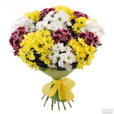 Микс из 15 шт (белых, желтых и бордовых ) хризантем в упаковке