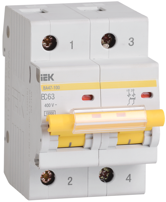 Автоматический выключатель IEK MVA40-2-025-C