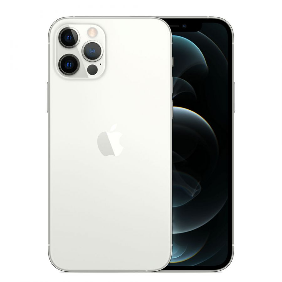 Смартфон Apple iPhone 12 Pro Max 256GB Silver (MGDD3RU/A)