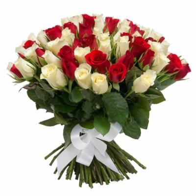 101 роза белая и красная 60см под ленту