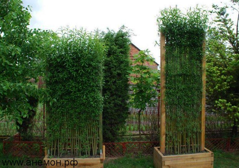 Модуль из плетеной ивы в деревянном каркасе