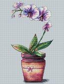 """""""Орхидея в горшочке"""". Схема для вышивания крестиком."""