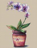 """Orchid in a pot"". Digital cross stitch pattern."