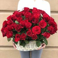 51 красная роза в корзине