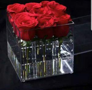 Роза в прозрачном боксе