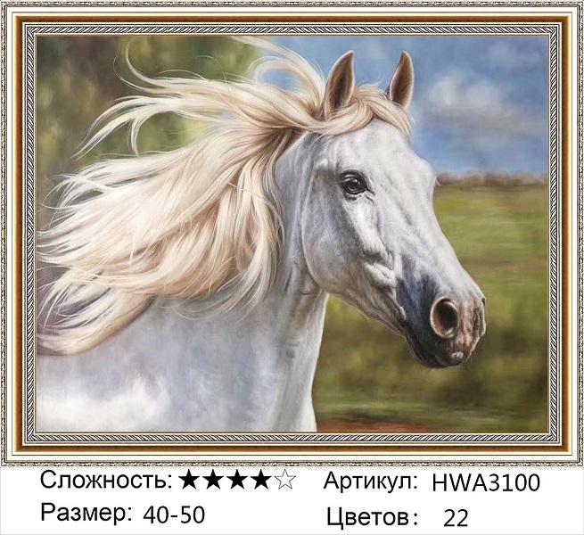 Алмазная мозаика на подрамнике HWA3100